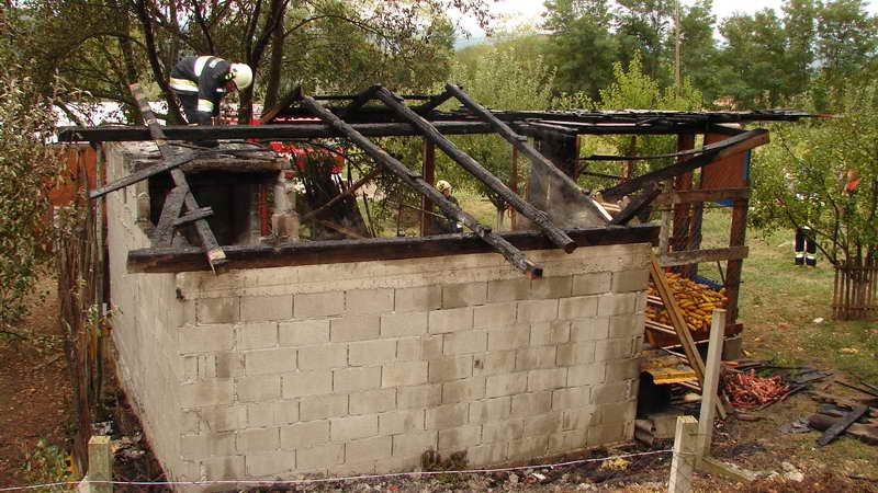www.vatrogasni-portal.com/images/news/120902-svinje-1.jpg